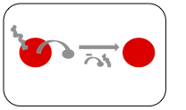 Optimization - Input Protein