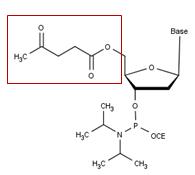Levulinyl CEP
