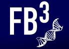 FB3 2012