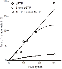 Fig 2 Rate of mutagenesis as a function of the number of PCRcycles [Zaccolo et al]