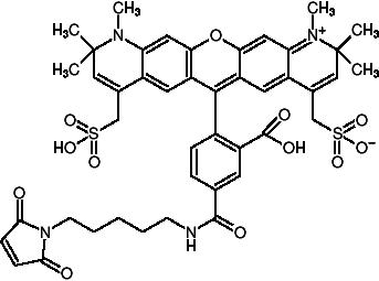 AF594 Maleimide, Maleimides of Fluorescent Dyes - Jena