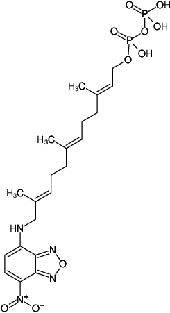 Structural formula of NBD-FPP ({3,7,11-trimethyl-12-(7-nitro-benzo[1,2,5]oxadiazo-4-ylamino),-dodeca-2,6,10-trien-1} pyrophosphate)