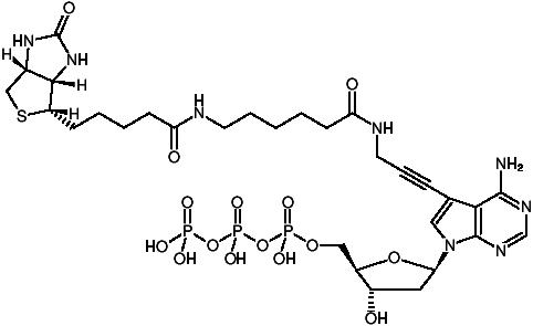 Structural formula of Biotin-11-dATP (γ-[N-(Biotin-6-amino-hexanoyl)]-7-propargylamino-2'-deoxy-7-deaza-adenosine-5'-triphosphate, Triethylammonium salt)