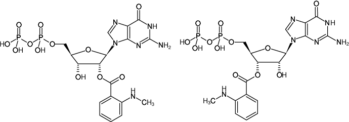 Structural formula of Mant-GDP (2'/3'-O-(N-Methyl-anthraniloyl)-guanosine-5'-diphosphate, Triethylammonium salt)