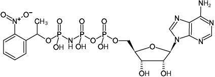 Structural formula of NPE-caged-AppNHp ((NPE-caged-AMPPNP), Adenosine-5'-[( β,γ )-imido]triphosphate, P3-(1-(2-nitrophenyl)-ethyl)-ester, Triethylammonium salt)
