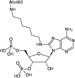 Structural formula of 8-(6-Aminohexyl)-amino-adenosine-3',5'-bisphosphate-ATTO-665 (8-(6-Aminohexyl)-amino-adenosine-3',5'-bisphosphate, labeled with ATTO 665, Triethylammonium salt)