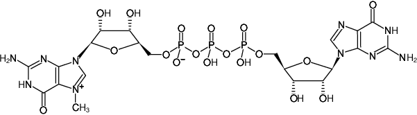 Structural formula of m7GP3G (Monomethylated Cap Analog) - Solution (m7G(5')ppp(5')G)