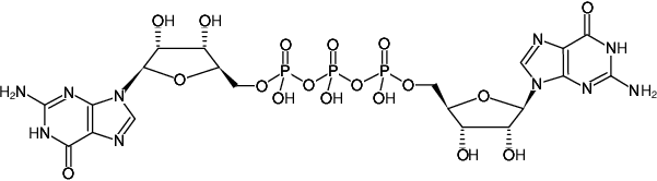 Structural formula of GP3G - Solid (Unmethylated Cap Analog) (G(5')ppp(5')G)