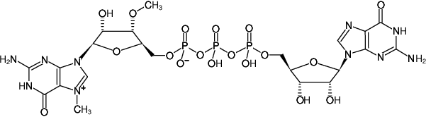 Structural formula of m27,3'-OGP3G (ARCA Cap Analog) - Solution (m27,3'-OG(5')ppp(5')G)