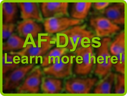 AF-Dyes - Learn more here!