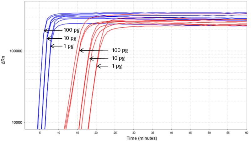 Figure 1: Rapid isothermal amplification of  target DNA (100 pg, 10 pg, 1 pg template) with Saphir Bst2.0 Turbo (blue; #PCR-390) compared to normal Saphir Bst2.0 (red, #PCR-389), Incubation at 65°C