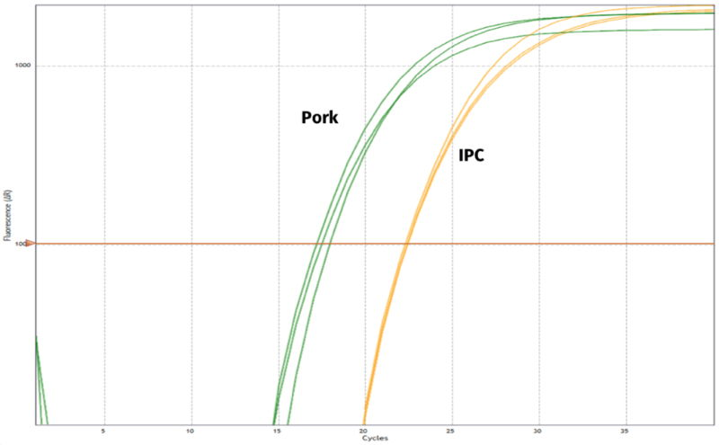 Figure 1: MeatDetect qPCR Kit – Pork (Halal), Amplification plot with positive pork signal (FAM fluorescence channel, green) and positive IPC (internal positive control) signal (ROX fluorescence channel, orange).