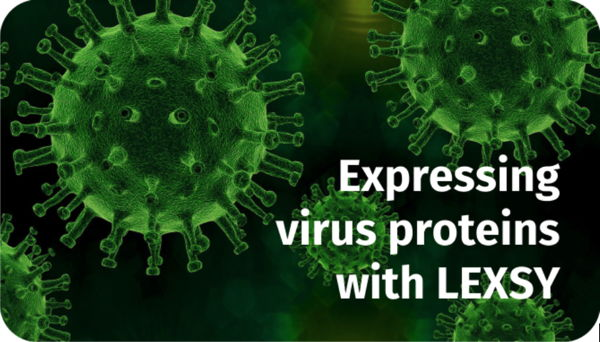 Expressing virus proteins with LEXSY