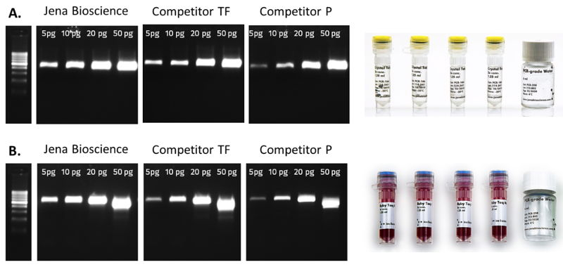 Fig. 1: Jena Bioscience Crystal Taq Master (A) as well as Ruby Taq Master (B) have been developed to achieve distinct signals even at lowest template concentations in comparisson to equivalent mixes