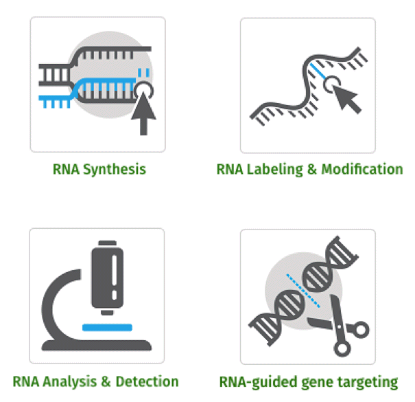 RNA Technologies