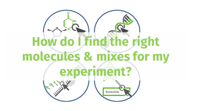 Nucleotides & qPCR: Easy online Search