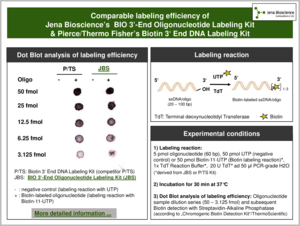 Preview  Labeling efficiency of BIO 3'-End Oligonucleotide Labeling Kit vs. competitor