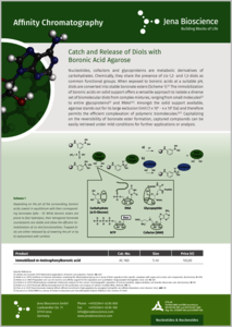 Preview Catch and Release of Diols with Boronic Acid Agarose