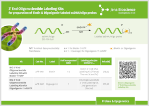 Preview 3' End Oligonucleotide Labeling Kits